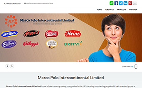 Our Works, Porfolio, Our Clients, Hogo World